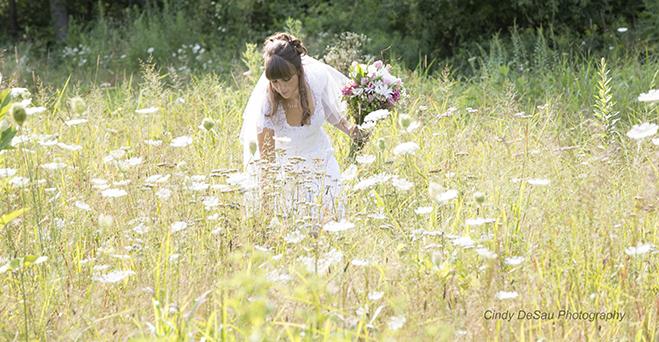 August Wedding in New Hope, Bucks County Pennsylvania